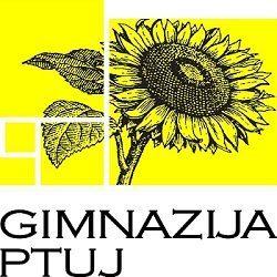 www.gimptuj.si